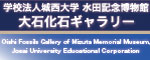 Oishi Fossils Gallery of Mizuta Memorial Museum, Josai University Educational Corporation